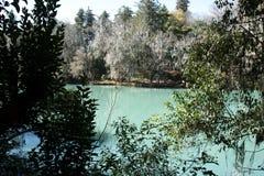 Lago Turquesa lake, San Miguel Regla. Lago Turquesa lake in Eco Turistico del Lago Park, San Miguel Regla, near Huasca de Ocampo, Hidalgo, Mexico royalty free stock photo