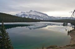 Lago two Gato Imagenes de archivo
