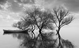 Lago Uluabat en Turquía Imagen de archivo libre de regalías