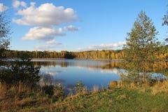 Lago in una foresta deliziosa di autunno al giorno soleggiato La Russia Fotografia Stock