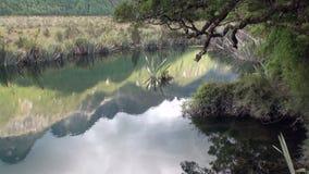 Lago unico in acqua calma delle montagne verdi della Nuova Zelanda stock footage