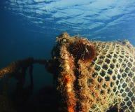 Lago urchin Fotografia Stock Libera da Diritti