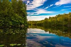 Lago vívido Fotografia de Stock Royalty Free