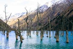 Lago valley Fotografia Stock
