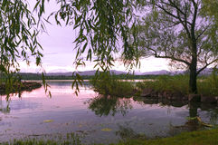 Lago Varese, paisagem Imagem de Stock