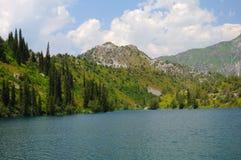 Lago variopinto con l'albero della pelliccia Immagini Stock