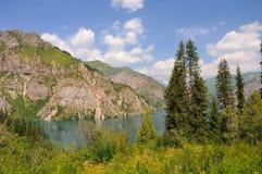 Lago variopinto della montagna con l'albero della pelliccia Fotografia Stock Libera da Diritti