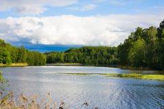 Lago, verano fotografía de archivo