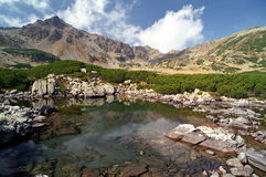 Lago verde Imagenes de archivo
