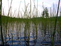 Lago verde Fotografie Stock