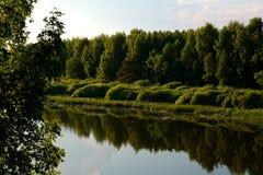 Lago verde fotografia de stock
