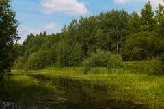 Lago verde Imágenes de archivo libres de regalías