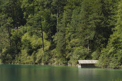 Lago verde Alpsee con la tettoia di canottaggio e gli alberi, Germania Immagine Stock