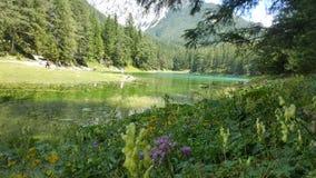 Lago verde asombroso en Austria Fotografía de archivo