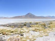 Lago verde in Bolivia Fotografie Stock Libere da Diritti