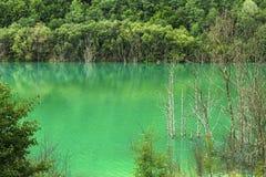 Lago verde de la explotación minera Foto de archivo libre de regalías