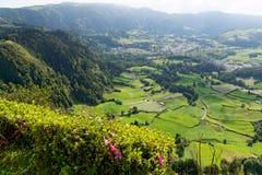 Lago verde del sao Miguel, las islas de Azores, Portugal de los furnas Imagen de archivo