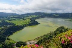 Lago verde del sao Miguel, las islas de Azores, Portugal de los furnas Imágenes de archivo libres de regalías