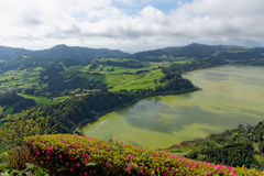 Lago verde del sao Miguel, las islas de Azores, Portugal de los furnas Foto de archivo