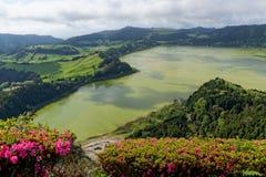 Lago verde del sao Miguel, las islas de Azores, Portugal de los furnas Imagen de archivo libre de regalías