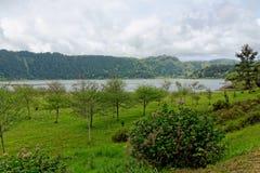 Lago verde del sao Miguel, las islas de Azores, Portugal de los furnas Fotos de archivo