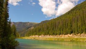 Lago verde oliva Imágenes de archivo libres de regalías