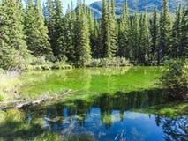 Lago verde smeraldo in Columbia Britannica del parco nazionale di banff Fotografie Stock Libere da Diritti