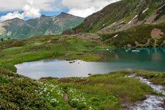 Lago verde smeraldo della montagna circondato da erba verde e dai fiori Immagine Stock Libera da Diritti