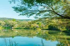 Lago verde smeraldo maestoso della montagna Fotografie Stock Libere da Diritti