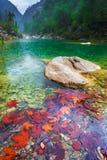 Lago verde in un paesaggio del canyon della montagna Fotografie Stock Libere da Diritti