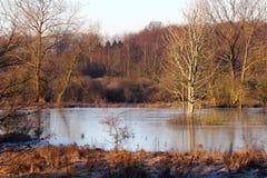 Lago vestido na roupa do inverno foto de stock