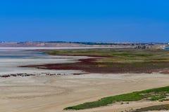 Lago vicino al mare Cielo blu immagini stock libere da diritti