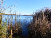 Lago vicino a Bristol, Wisconsin Brazee Fotografie Stock
