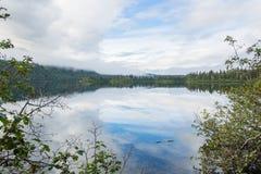 Lago vicino a Talkeetna Alaska Fotografia Stock