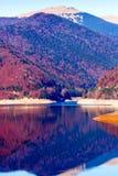 Lago Vidraru in Romania Immagine Stock
