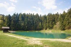 Lago Vodarenska in Banska Stiavnica Fotografie Stock Libere da Diritti