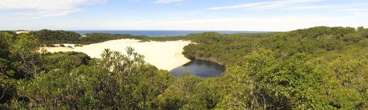 Lago Wabby, Fraser Island, Queensland, Australia imagenes de archivo