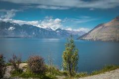 Lago Wakatipu Fotografie Stock