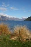 Lago Wakatipu da Queenstown Nuova Zelanda Immagini Stock Libere da Diritti