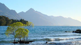 Lago Wakatipu glories do por do sol Imagens de Stock Royalty Free