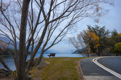 Lago Wakatipu morning di inverno Fotografie Stock