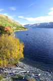 Lago Wanaka Immagine Stock Libera da Diritti