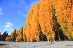 Lago Wanaka, ilha sul Nova Zelândia Fotos de Stock