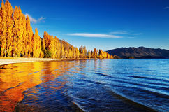 Lago Wanaka, Nova Zelândia Imagens de Stock Royalty Free