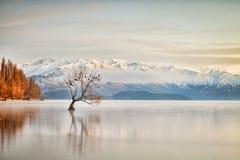 Lago Wanaka Otago Nueva Zelanda foto de archivo
