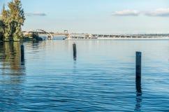 Lago Washington - Shoreline 5 Fotografia Stock