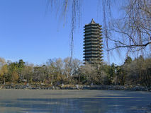 Lago WeiMing en invierno Fotos de archivo libres de regalías