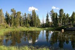 Lago wilderness Fotos de archivo libres de regalías