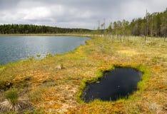 Lago wilderness Foto de archivo libre de regalías