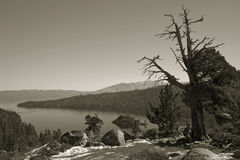 Lago wilderness de la sepia Fotos de archivo